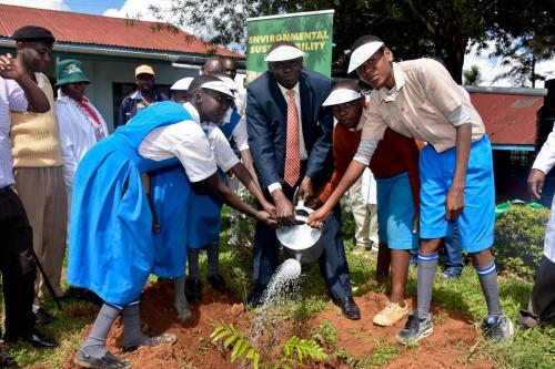 Mungania Tea Factory - Tree planting and water tank donation